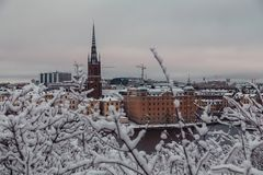 Free Urban View Behind The Trees Of Riddarholmen And The Old Church At Winter, Stockholm Sweden Stock Photos - 140423313