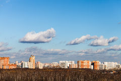 Urban view with street on horizon and bare trees Stock Images