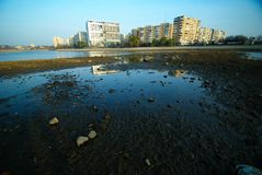 Water pollution in the City. Global warming leads to city pollution. polluted lake with building blocks Stock Photography