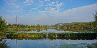 Urban Wetland Park Stock Photo