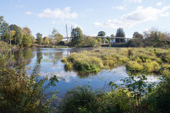 Urban Wetlands. Delta Oaks wetland park in Eugene Oregon with a bike bridge in the background stock images