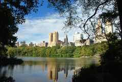 Urban or Wild life?. Park Ave and Dakota Building in NY from a path inside Central Park with vegetation framing the view Royalty Free Stock Photo