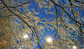 Urban winter Royalty Free Stock Images