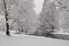 Urban winter landscape Royalty Free Stock Photos