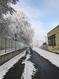 Urban winter scenery. Walking by the fence Stock Photo