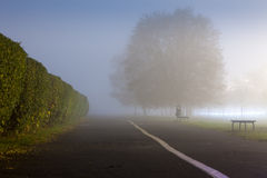 An urbanized path during misty weather Royalty Free Stock Image