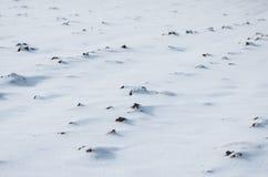 Urbares Land unter Schnee Lizenzfreie Stockfotos
