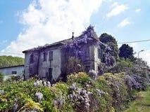 Urbex in het huis van wisteria royalty-vrije stock afbeeldingen