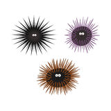Urchin animal cartoon character. Set black brown purple. Isolated on white background. Vector illustration for children Stock Photography