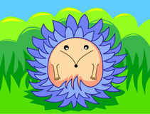 Urchin in the grass Stock Photo
