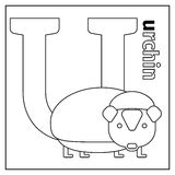 Urchin, letter U coloring page Stock Photography