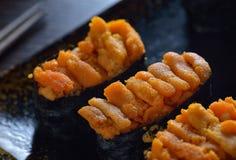 Urchin Shrimp sushi Stock Image