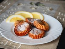 Сurd biscuits and a few slices of lemon in white plate royalty free stock photos