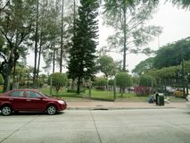 Urdesa Park Guayaquil  from across the street. View from across the street of park in Urdesa Guayaquil, with pines and other species, peacefull place, good for Royalty Free Stock Photo