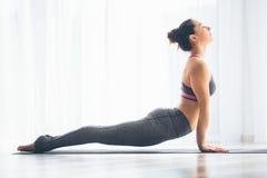 Urdhva mukha svanasana. Beautiful yoga woman practice in a training hall background. Royalty Free Stock Photography