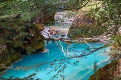 Urederra-Flussfrühling Lizenzfreies Stockfoto