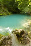 Urederra I. Wild river of clear water with reflections Stock Photo