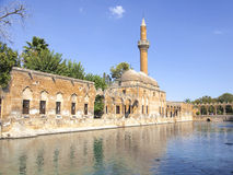 Urfa Fish Lake Stock Image