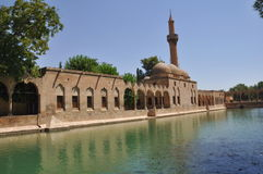 Urfa mosque Turkey. Scenic view of Halil-ur-Rahman mosque with Pool of Sacred Fish (Balikligol) in foreground, Urfa city, Turkey Stock Images