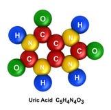 Uric Acid vector illustration