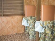Urinal Stock Photos