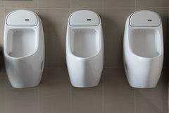 Urinal on White  wall. Bathroom blue ceramic chrome clean Stock Photos