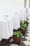 urinals общественного туалета Стоковое Изображение RF