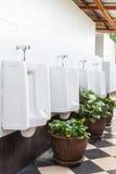 urinals общественного туалета Стоковая Фотография
