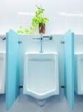 urinals офиса Стоковое фото RF