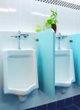 urinals офиса Стоковые Изображения