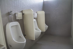 urinals Immagine Stock