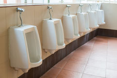 Urinals in gas station service Stock Images