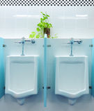 Urinals at office Royalty Free Stock Image