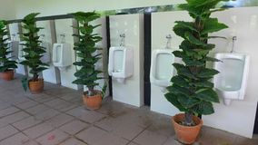 Urinals. Urinal row in male toilet Royalty Free Stock Photos