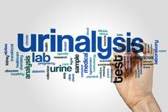 Urinalysis word cloud Royalty Free Stock Photo