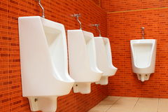 Urinaux blancs de porcelaine Image stock