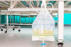 Urine bag hanging beside the patient`s bed. Inside the hospital Stock Photo