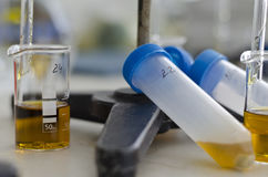 Urine sample stock photo