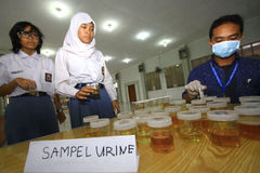 Urine tests for students Stock Photo