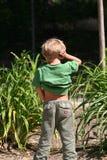 urinera för unge arkivfoto