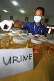 Urinetests voor studenten Royalty-vrije Stock Afbeelding