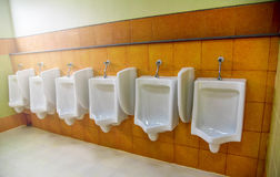 urinoirs Photographie stock