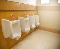 urinoirs Photo libre de droits