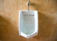 Urinoirs blancs de la toilette du ` s d'hommes Photographie stock libre de droits