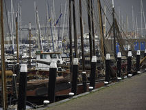 Urk Royalty Free Stock Images
