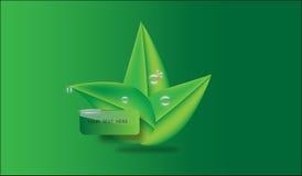 Urlop z kroplami na nim use jako firma logo na zielonym tle Fotografia Royalty Free