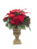 Urn met het bloemstuk van Kerstmis op wit Royalty-vrije Stock Foto