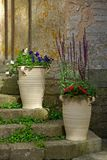 Urnen met bloemen royalty-vrije stock afbeelding