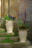 Urnen mit Blumen lizenzfreies stockbild