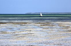 Sail boat moored in shallow water, Uroa, Zanzibar, Tanzania. UROA is a small and centerless village with resorts on the southern and northern side of its bay Stock Photos